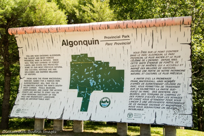 Algonquin Provincial Park sign