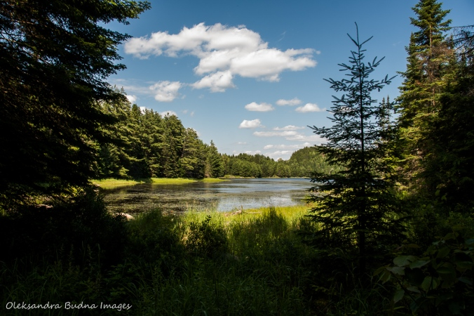 View of Sterling Lake in Algonquin