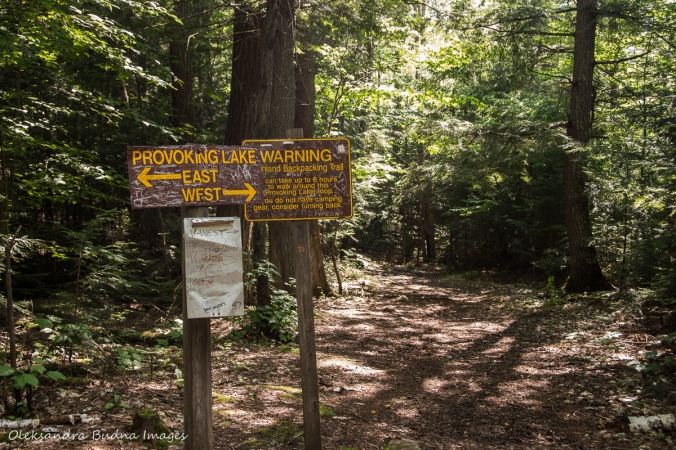 Provoking East/west sign on Highlands trail in algonquin