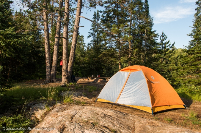 tent on Faya Lake Campsite in Algonquin