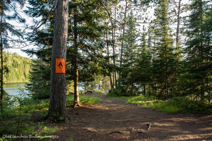 Faya Lake Campsite along Highland Trail in Algonquin
