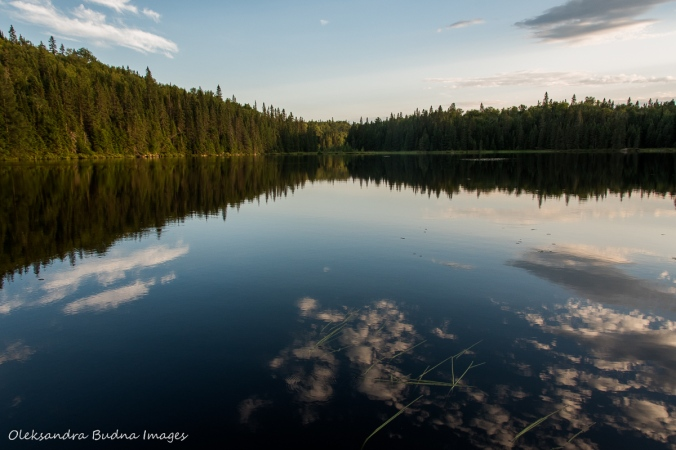 Faya Lake in Algonquin
