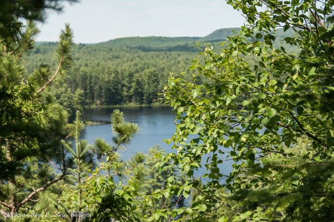 view of Mew Lake from Apgonquin Highlands Trail in Algonquin