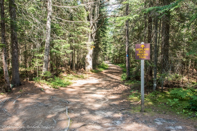 HIghlands Blackpacking trail sign in algonquin