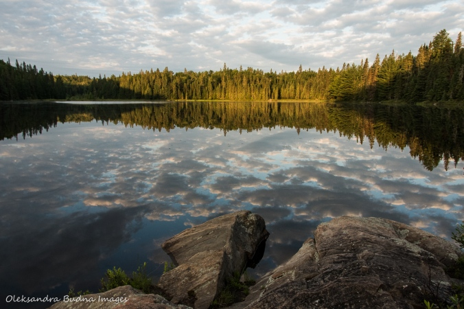morning on Faya Lake in Algonquin