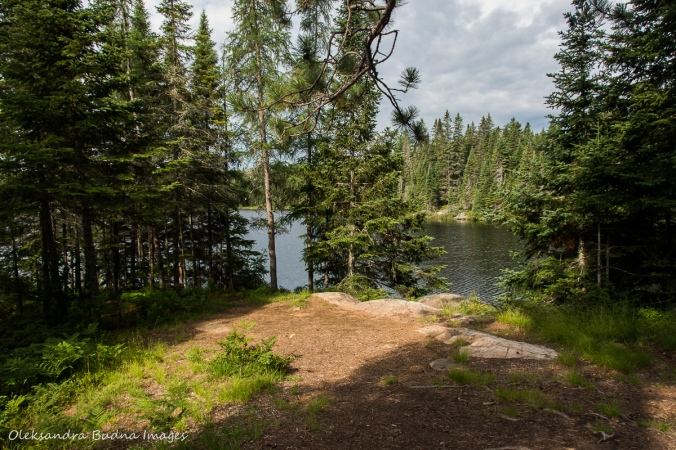 Faya Lake campsite along Highland Trail in Algonquin
