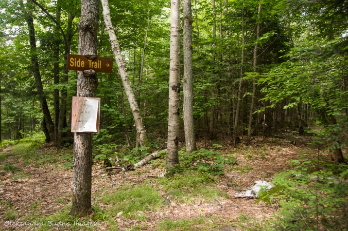 side trail to Faya Lake on Highland Trail in Algonquin