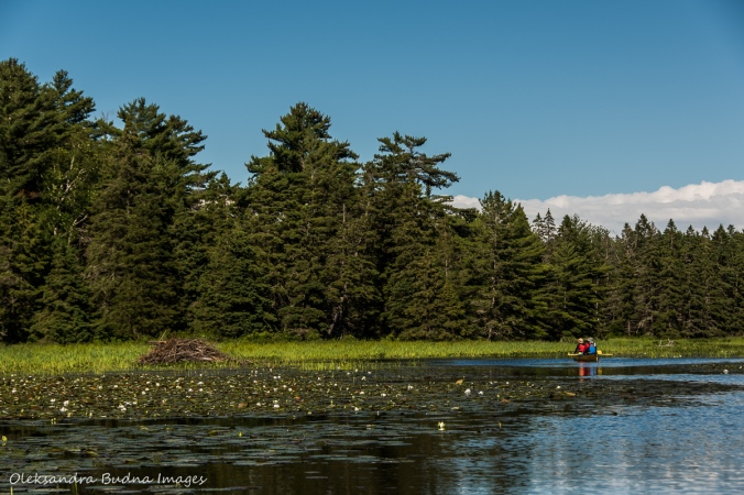 canoeing at Point Grondine Park