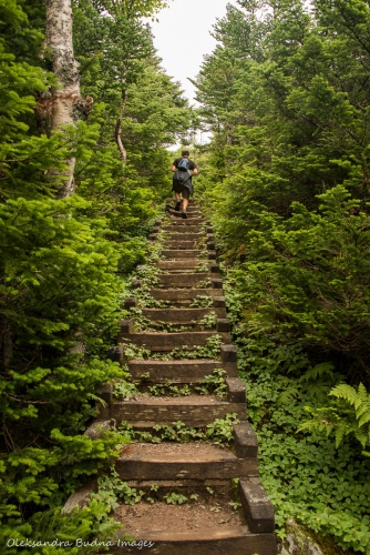 stairs on Gros Morne Mountain Trail Newfoundland