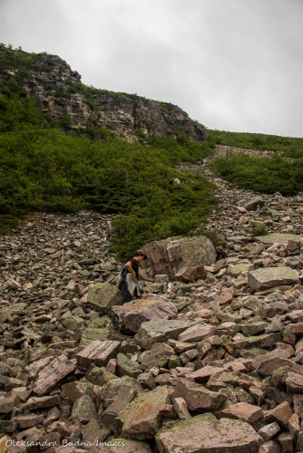 hiking up Gros Morne Mountain trail in Newfoundland