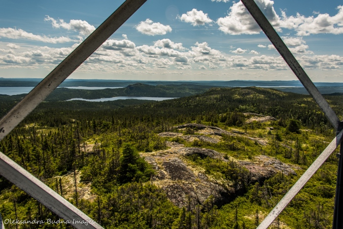 view from Ochre Hill in Terra NOva lookout tower in Newfoundland