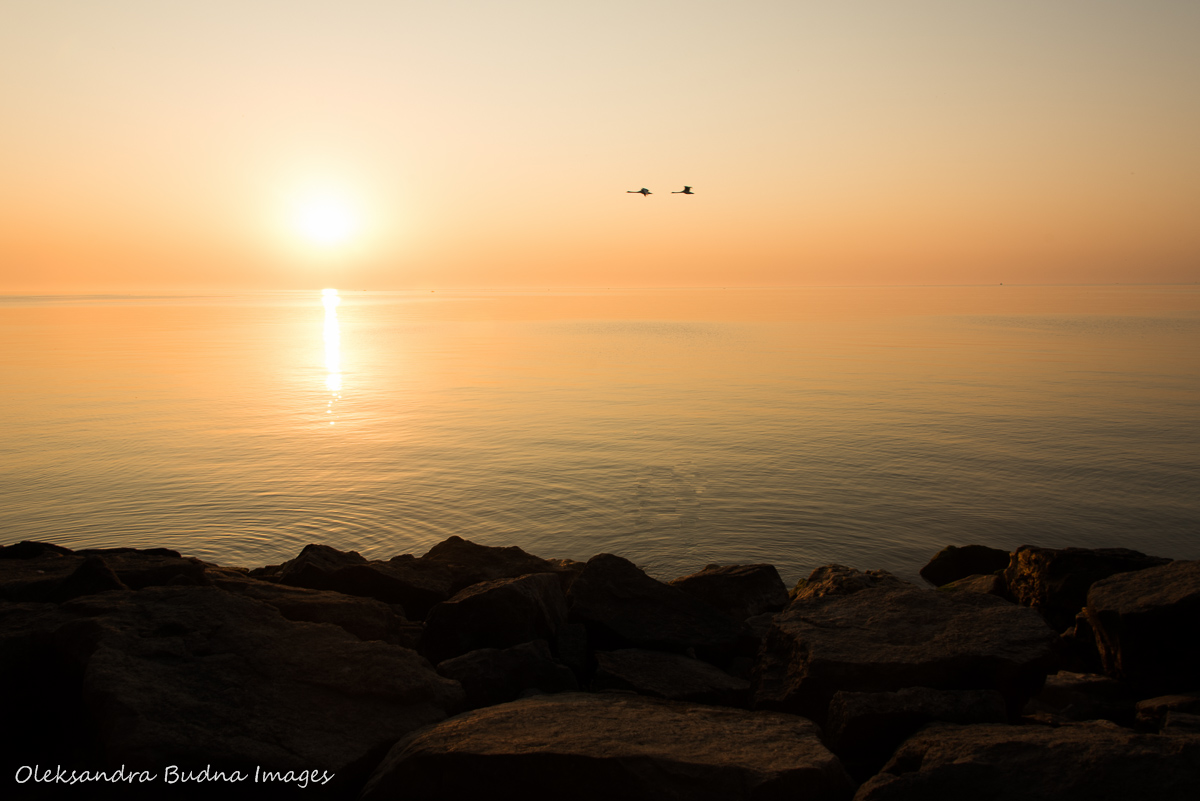 Lake Ontario in the morning