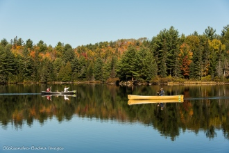 paddling on Joe Lake in Algonquin
