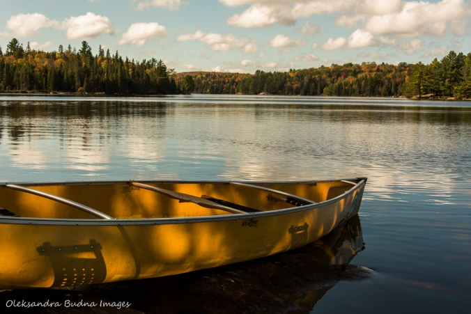 canoe on Joe Lake in Algonquin