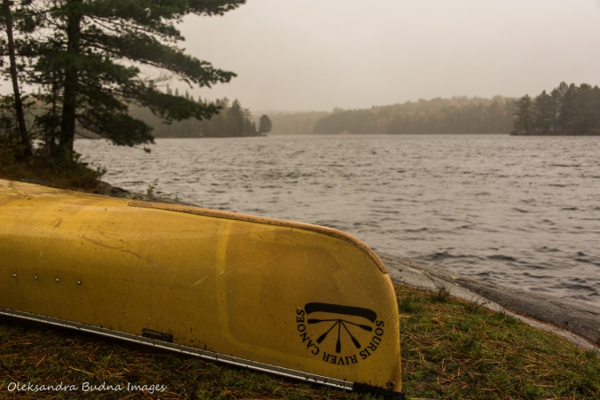 foggy morning on Joe Lake in Algonquin