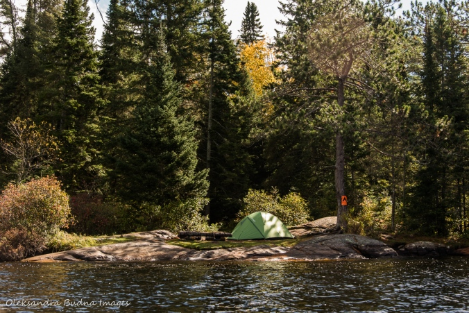 campsite on Little Joe/eastern arm in Algonquin