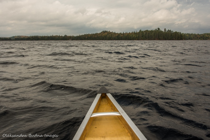 canoeing on Canoe Lake in Algonquin