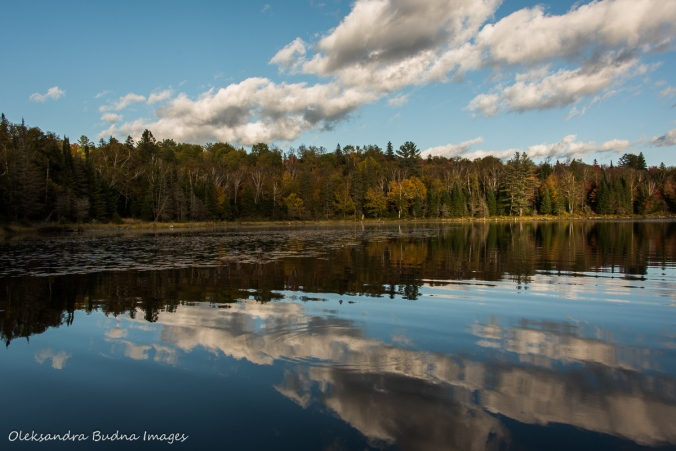 Tom Thompson Lake in Algonquin
