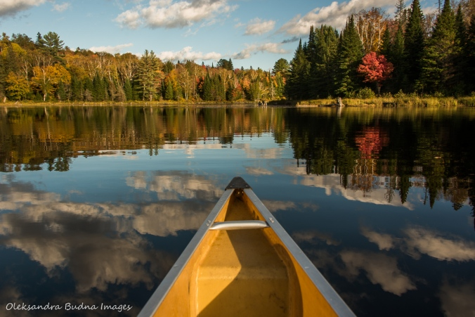 canoeing on Tom Thompson lake