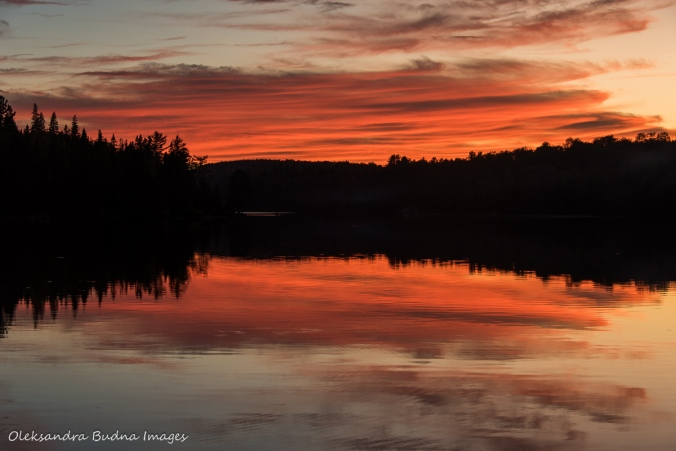 sunset on Joe Lake in Algonquin