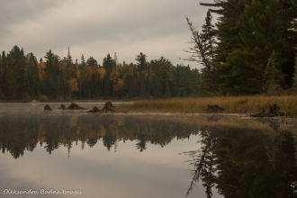 morning on Joe Lake in Algonquin