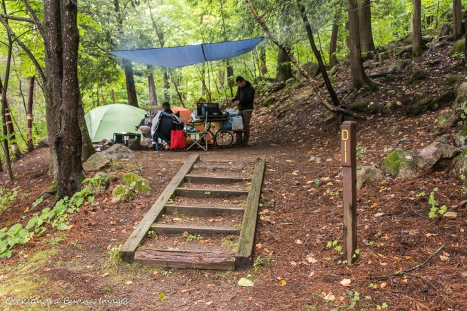 Campsite D11 in Gatineau