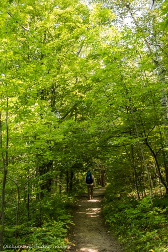 Lusk Cave Trail in Gatineau Park