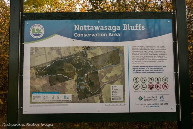 map at Nottawasaga Bluffs CA