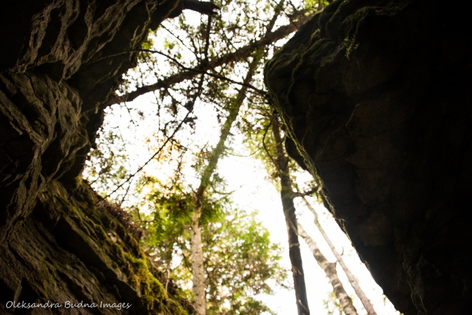 view from a crevice while hiking Keyhole Trail at Nottawasaga Bluffs Conservation Area