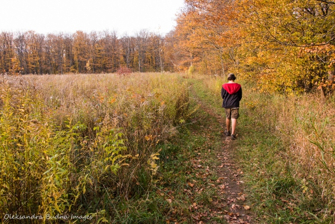 hiking Bruce Trail at Nottawasaga Bluffs Conservation Area
