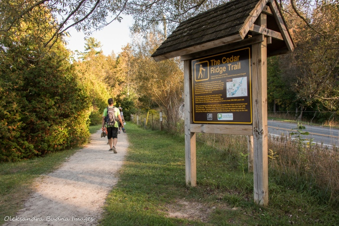 hiking at Rockwood Conservation Area
