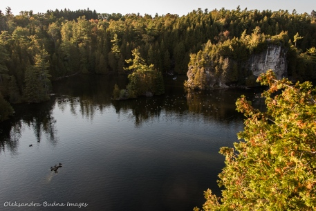 view from Lookout at Rockwood Conservation Area