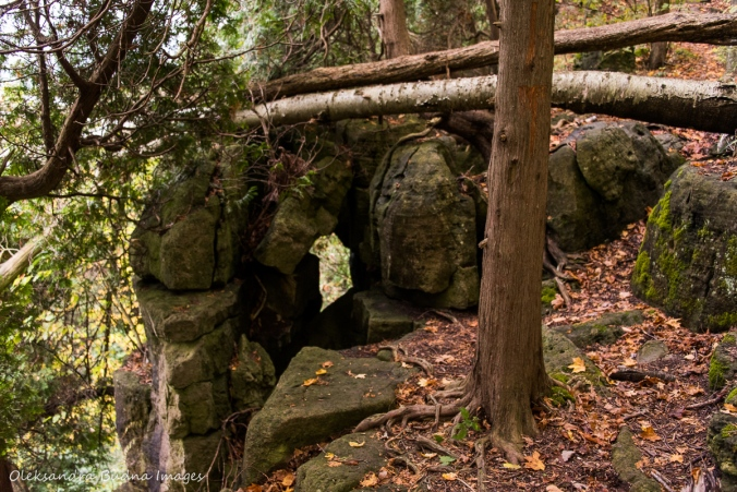 fissures at Kelso Conservation Area