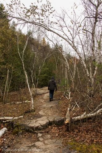 hiking at Kelso Conservation Area