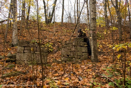 ruins at Kelso conservation area