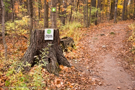 Gateway to heaven trail at Kelso Conservation Area