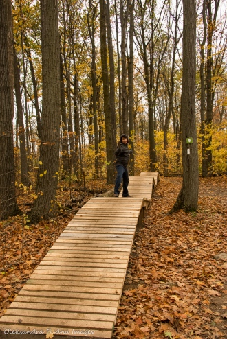 trail at Kelso Conservation Area