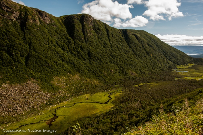 view from Gros Morne Mountain in Newfoundland