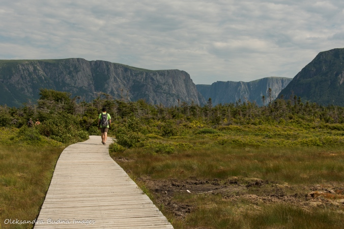 Western Brook Pond Trail in Gros Morne park in Newfoundland