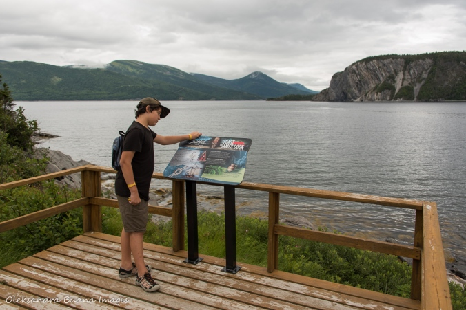 interpretive panel with the view of Bonne Bay in Norris Point in Newfoundland