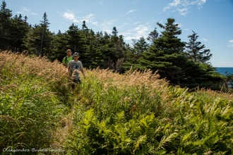 Green Gardens trail in Gros MOrne, Newfouldland