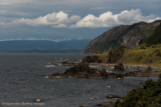 views from Green Gardens trail in Gros MOrne, Newfouldland