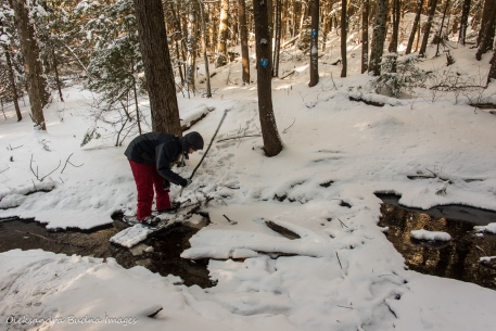 snowshoeing on Bonnie's Pond Trail in Silent Lake Provincial Park