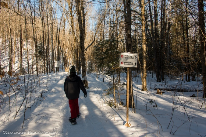 snowshoeing to Stubb's Falls at Arrowhead Provincial Park in the winter