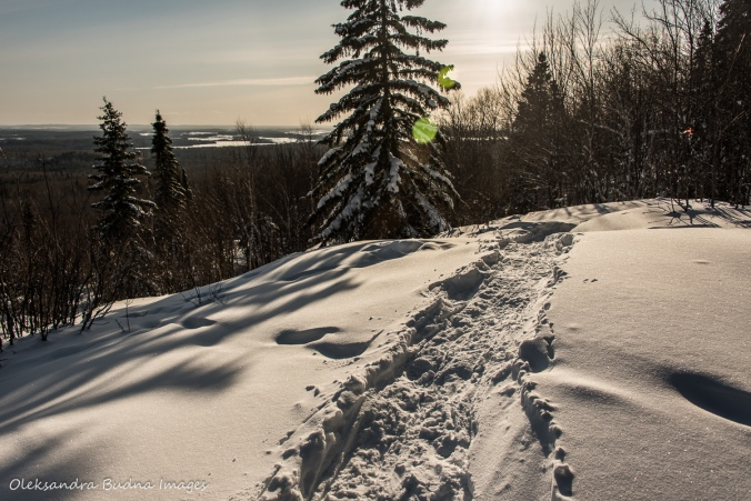 view along the snowshoe to La Cigale rustic shelter in parc national d'Aiguebelle