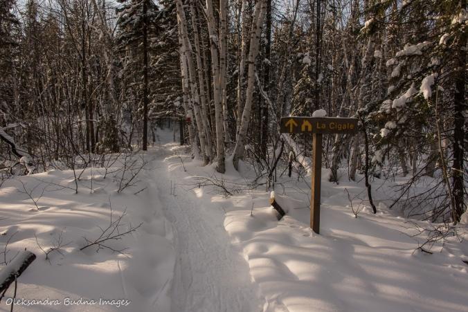 La Cigale sign in Parc National d'Aiguebelle