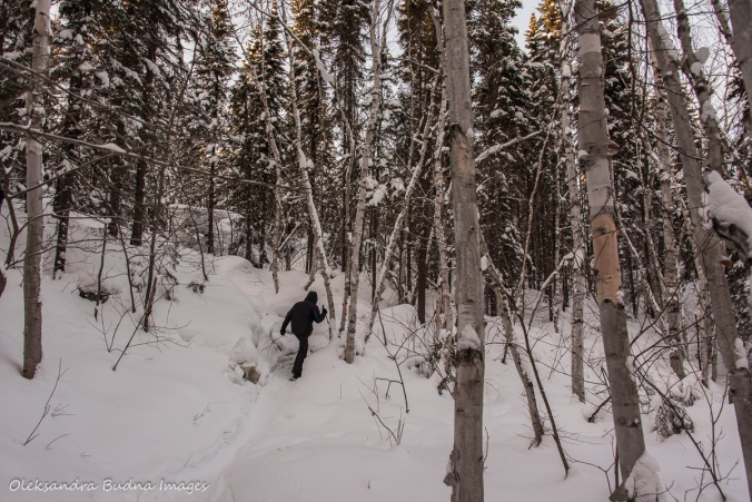 snowshoeing up to La Cigale rustic shelter in parc national d'Aiguebell