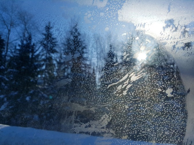 view from the frozen car window