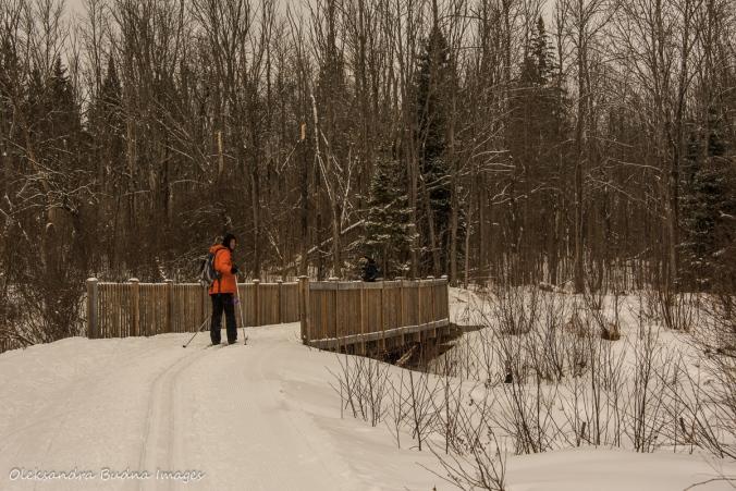 Arrowhead Lake ski trail in Arrowhead Provincial park