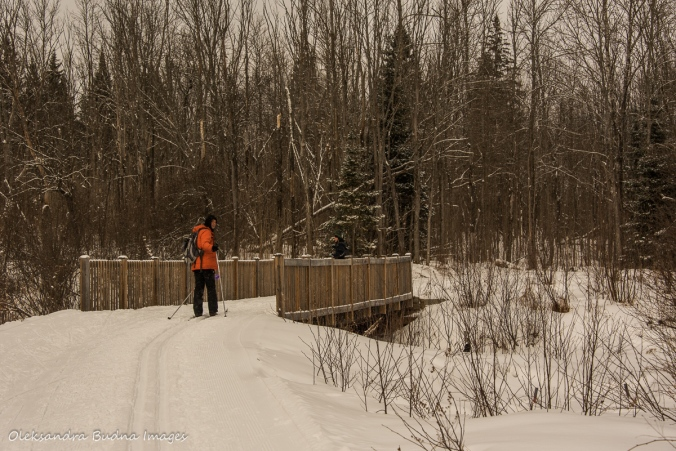 Arrowhead Lake ski trail in Arrowhead Provincial park
